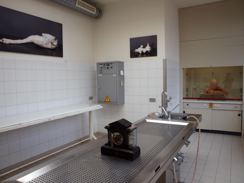 Post Mortem - autopsy room